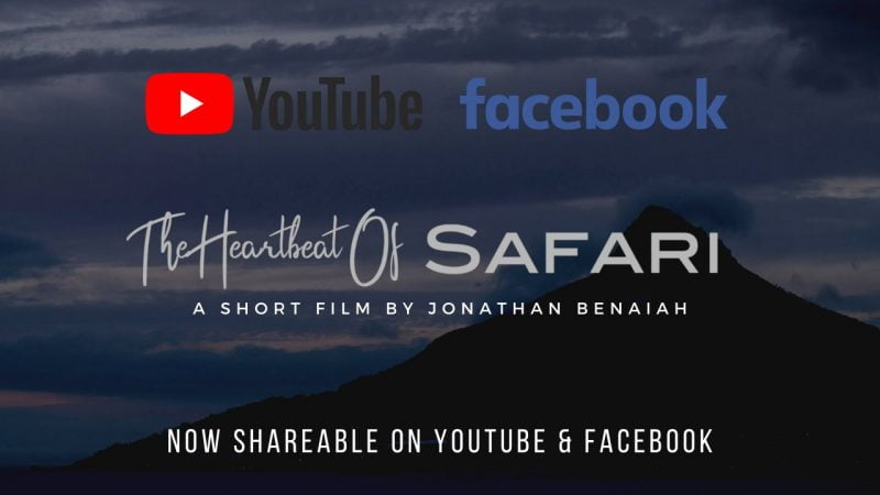 The Heartbeat Of SAFARI-8b1f19f9